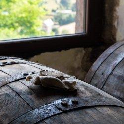 Whisky Twelve