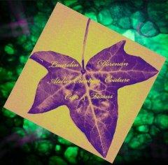 Logo de Atelier Laurelin Dórenan création couture