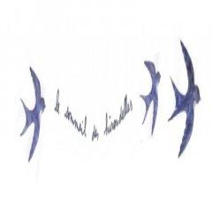 Logo de Le sommeil des hirondelles